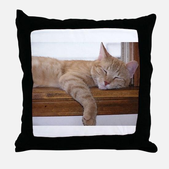 Comfy Munchie Throw Pillow