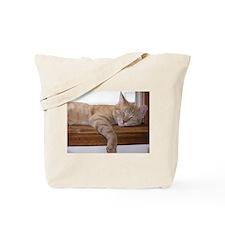 Comfy Munchie Tote Bag