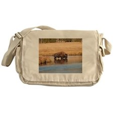Bison Messenger Bag