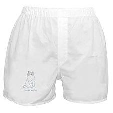 I Love My Ragdoll Boxer Shorts