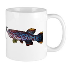 fundulophanchax gardneri akampa  Mug