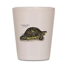 Florida Box Turtle Shot Glass
