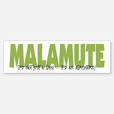 Malamute IT'S AN ADVENTURE Bumper Bumper Bumper Sticker