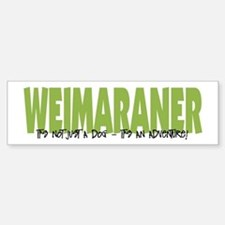 Weimaraner IT'S AN ADVENTURE Bumper Car Car Sticker