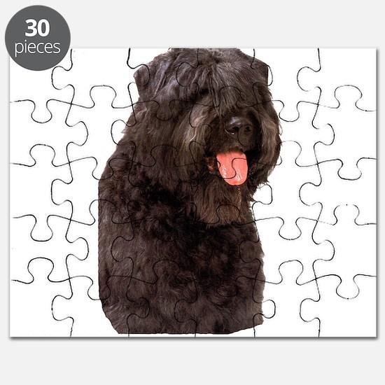 Bouvier Des Flandres Dog Puzzle