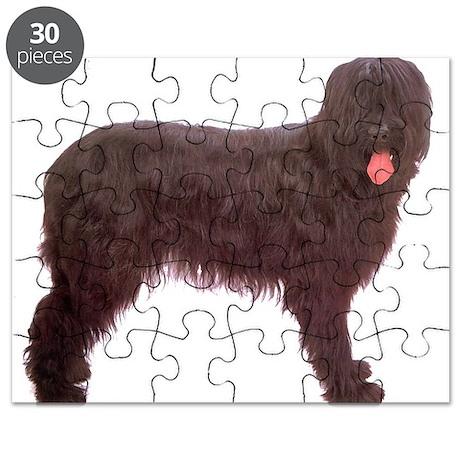 Briard Berger Dog Puzzle