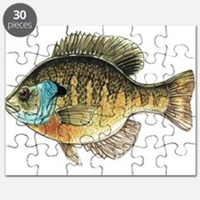 Bluegill Bream Fishing Puzzle