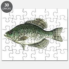 Black Crappie Fish Puzzle