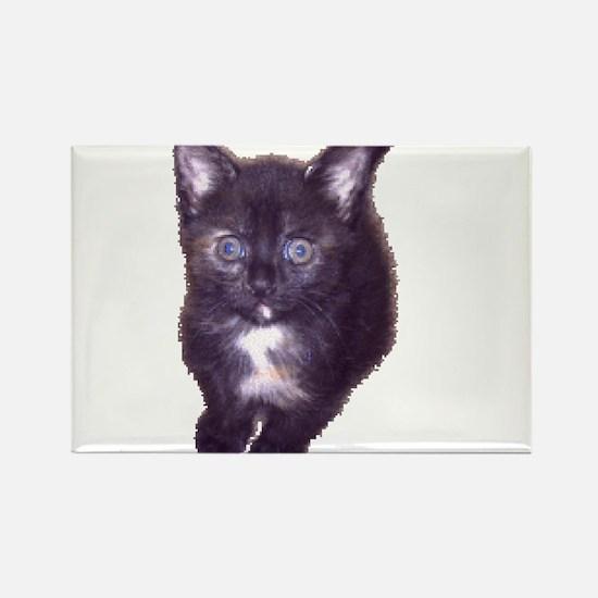 cute cat beast Rectangle Magnet