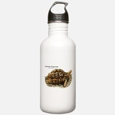 Leopard Tortoise Water Bottle
