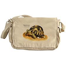 Radiated Tortoise Messenger Bag