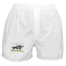 Horse race watercolor Boxer Shorts