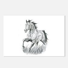 Arabian horse drawing Postcards (Package of 8)