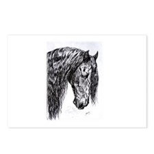 Frisian horse drawing Postcards (Package of 8)