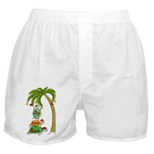Hawaiian Christmas Santa Turtle Boxer Shorts