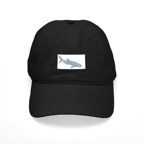 Whale Shark Black Cap