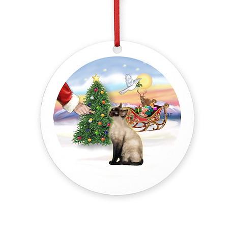 Treat for a Siamese cat (Choc) Ornament (Round)