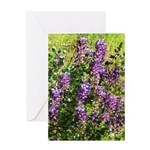 WRW Color by Design Greeting Card