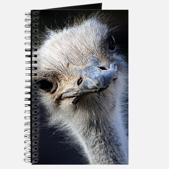 Ostrich Journal