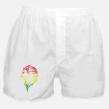 FIERCE JUDAH Boxer Shorts