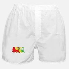 COLOR A LION Boxer Shorts