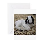 Cute Boer Goat Kid Greeting Cards (Pk of 10)
