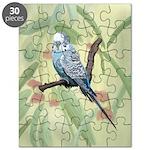 Blue Parakeet or Budgie Puzzle