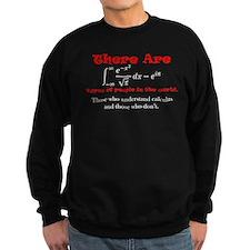 Calculus Jumper Sweater