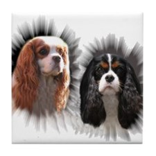 Tricolor Blenheim Cavalier Starburst Tile Coaster