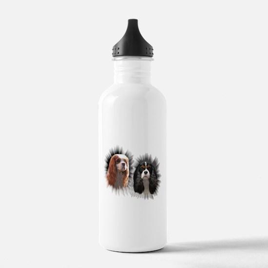 Tricolor Blenheim Cavalier Starburst Water Bottle