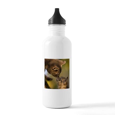 Kitten kiss Stainless Water Bottle 1.0L