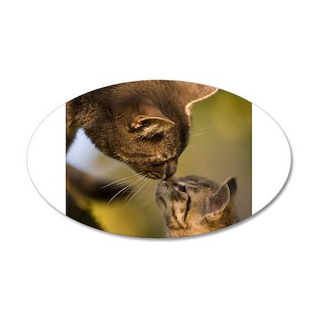 Kitten kiss 22x14 Oval Wall Peel