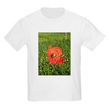 Single Red Poppy T-Shirt