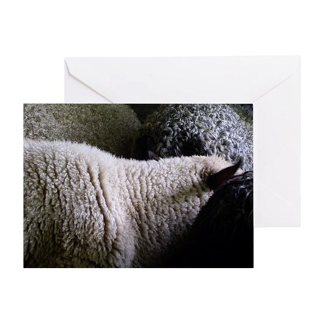 Wooly Textures Greeting Card