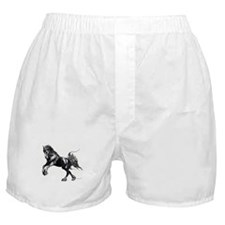 Keegan, Friesian Stallion Boxer Shorts