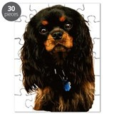 Black and tan cavalier king charles spaniel Puzzles