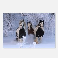 Cute Tinker horse Postcards (Package of 8)