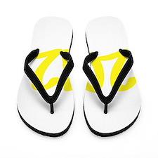 2012 Flip Flops
