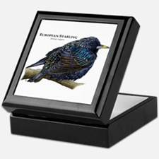 European Starling Keepsake Box