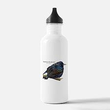 European Starling Water Bottle