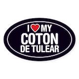 Coton de tulear Single