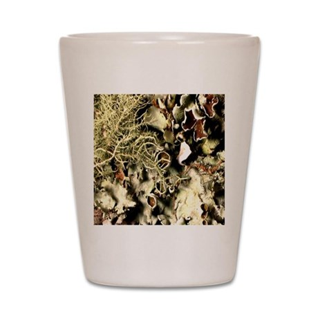 Lichen on Canvas by Picasso Shot Glass