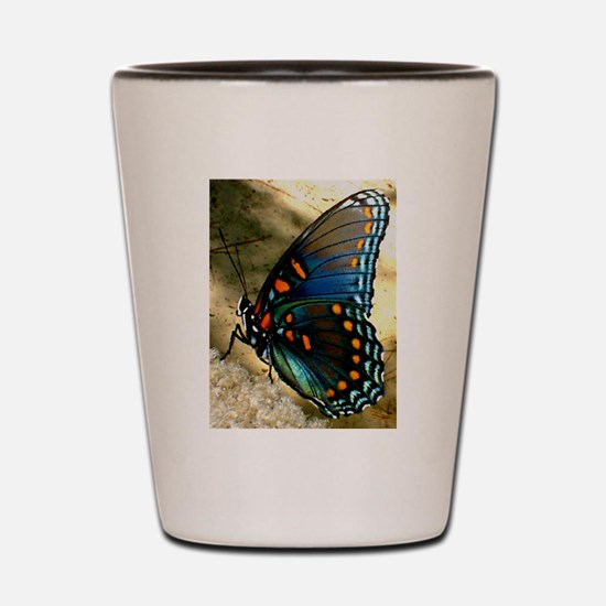 Red-Spotted Purple Limenitis Shot Glass