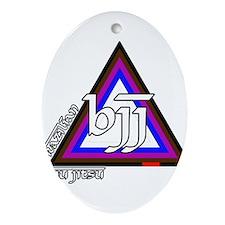 BJJ - Brazilian Jiu Jitsu - C Ornament (Oval)