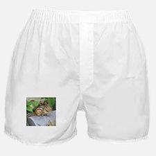 Garden Bandit Boxer Shorts