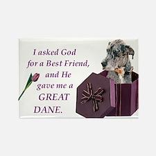 Great Dane (Blue Merle) Rectangle Magnet
