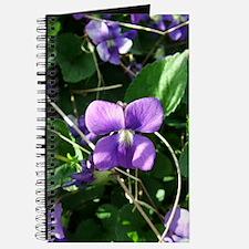 Violet Journal