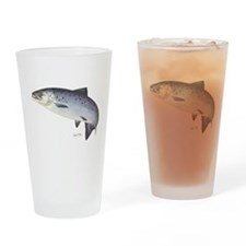 Salmon Drinking Glass