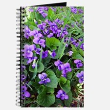 Violets Journal