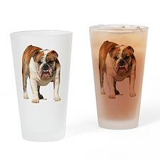 Bulldog Items Drinking Glass